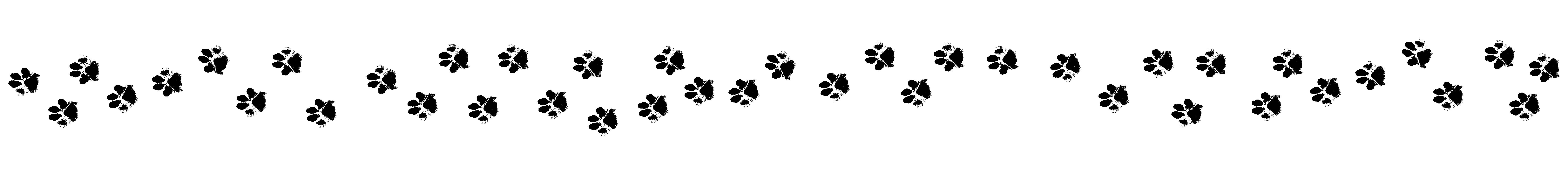 tassut-landing-01