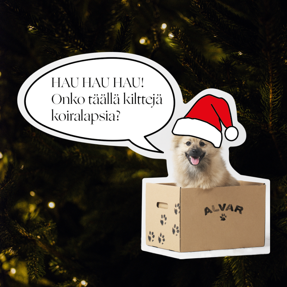 Koiran joulu